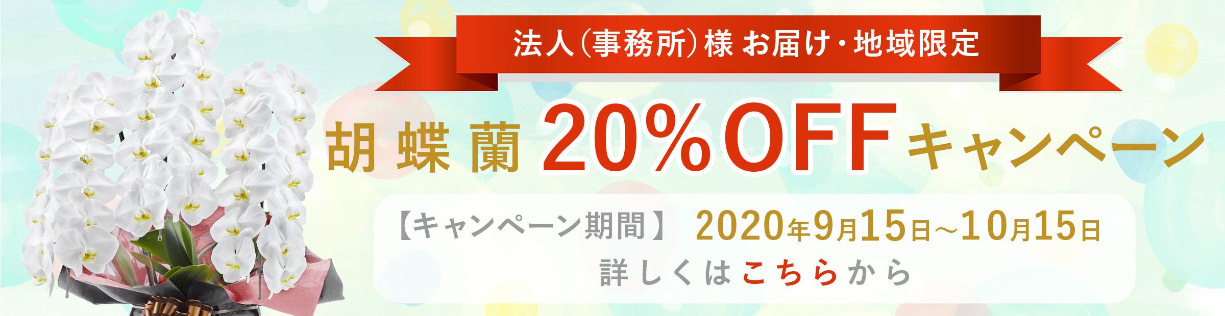 胡蝶蘭キャンペーン20%OFF-親切なお花屋さん(開店祝い.com)-